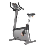 Horizon U4000 Upright Bike